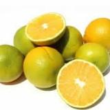Naranja Común ( aprox 3und por libra )